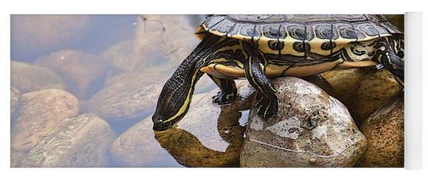 Turtle Drinking Water Yoga Mat