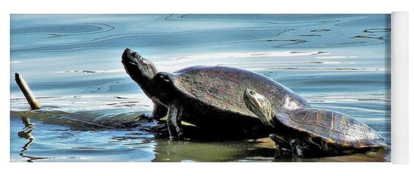 Turtles - Mother And Child Yoga Mat
