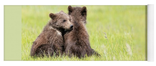 Twin Cubs Cuddling Yoga Mat