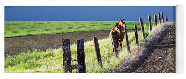 Two Horses In The Palouse Yoga Mat