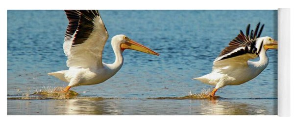 Two Pelicans Taking Off Yoga Mat