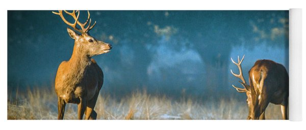 Two Stags Yoga Mat