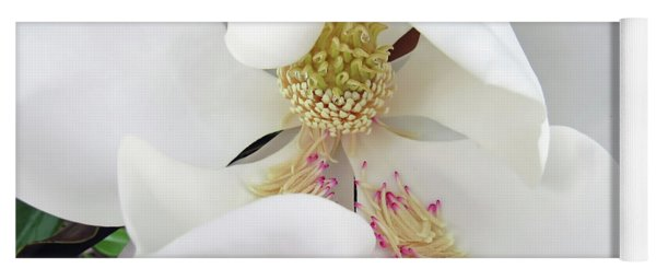 Unfolding Beauty Of Magnolia Yoga Mat