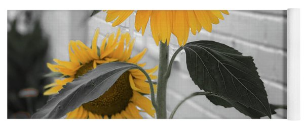 Urban Sunflower - Black And White Yoga Mat