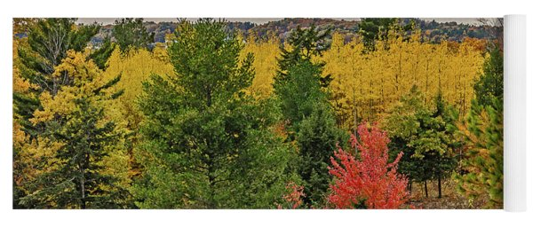 Vibrant Shades Of Red, Green, And Yellow Leaves Yoga Mat