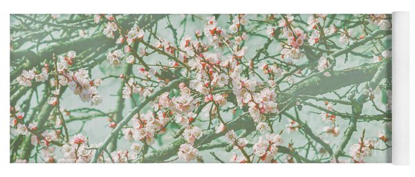 Wallpaper With Cherry Blossom Branch In Japanese Garden In Sprin Yoga Mat