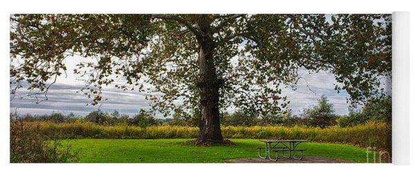 Walnut Woods Tree - 1 Yoga Mat