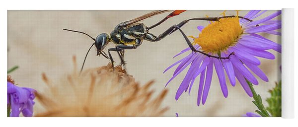 Wasp At White Sands Yoga Mat