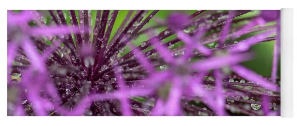 Water Drops On Purple Onion Flower Yoga Mat