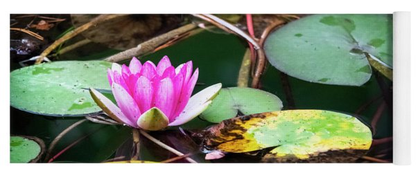 Water Lily #2 Yoga Mat