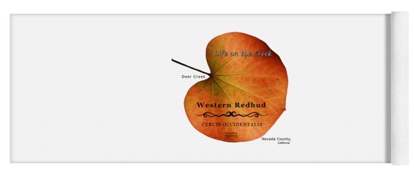 Western Redbud Yoga Mat