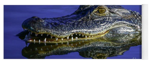 Yoga Mat featuring the photograph Wetlands Gator Close-up by Tom Claud