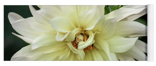 Yoga Mat featuring the photograph White Dahlia Beauty by Dale Kincaid