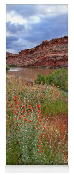 Wildflowers Along Colorado River And Highway 128 Yoga Mat