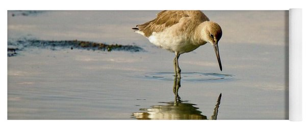 Willet Sees Its Reflection Yoga Mat