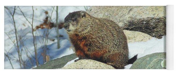Winter Groundhog Yoga Mat