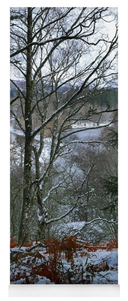 Winter Woodland View Yoga Mat