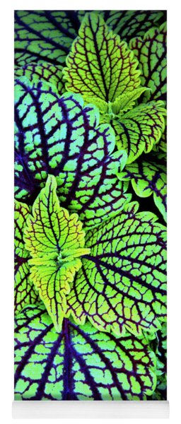 Yoga Mat featuring the photograph Verdure by Jessica Jenney