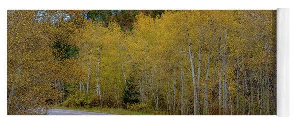 Yellow Aspens Yoga Mat