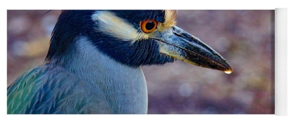 Yellow-crowned Night Heron Yoga Mat