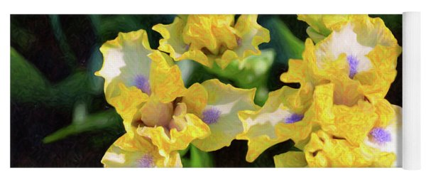 Yellow Irises - Joyful Reunion - By Omaste Witkowski Yoga Mat