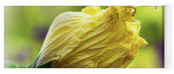 Yellow Mature Hibiscus  Yoga Mat