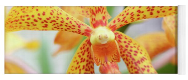 Yellow Spotted Spider Orchids Yoga Mat