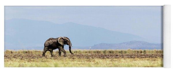 Young Elephant Walking Alone In Amboseli Kenya Yoga Mat