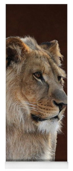 Young Male Lion Portrait Yoga Mat