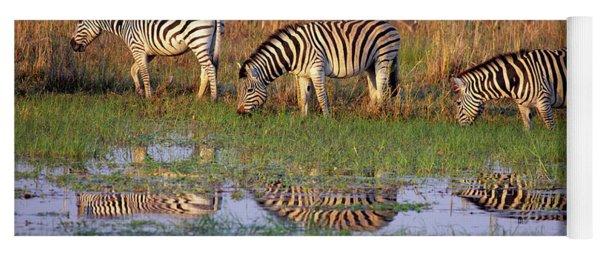 Zebras In Botswana Yoga Mat