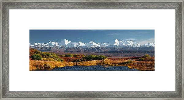 Denali's Path Framed Print