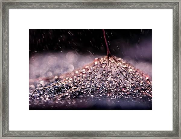 ''\ Framed Print