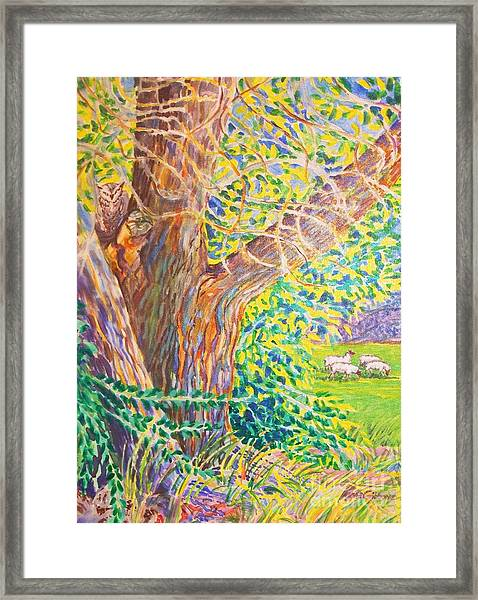 Painting Of Owl In Tree II Framed Print by Annie Gibbons