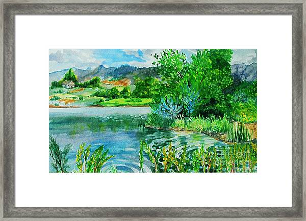 Plin Air Water Color Framed Print by Annie Gibbons