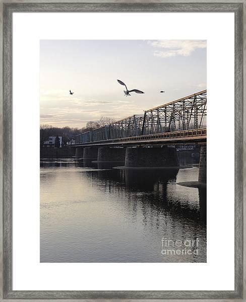 Gulls At The Bridge In January Framed Print