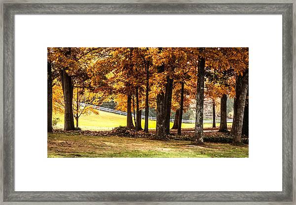 Streaming Sunrays Framed Print by Linda A Waterhouse