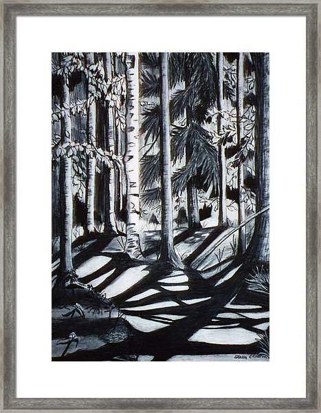 Take The Maine Path Framed Print