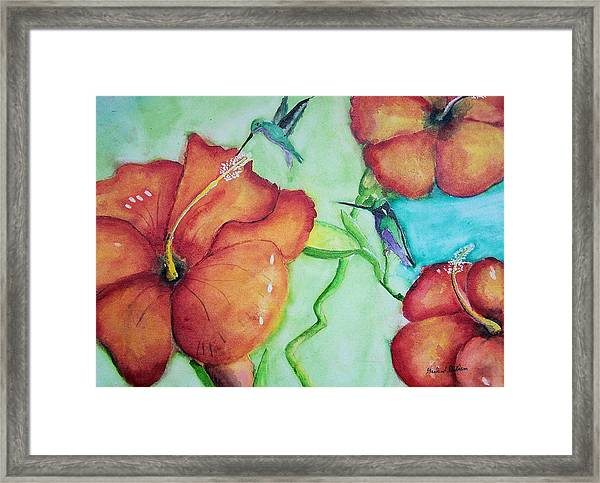 000002 Water Color Humming Birds Framed Print