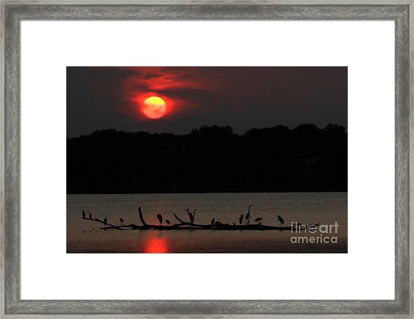 0016 White Rock Lake Dallas Texas Framed Print
