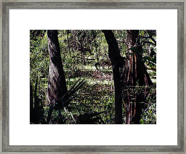 03032015 Southern Marsh Digital Pastel Framed Print