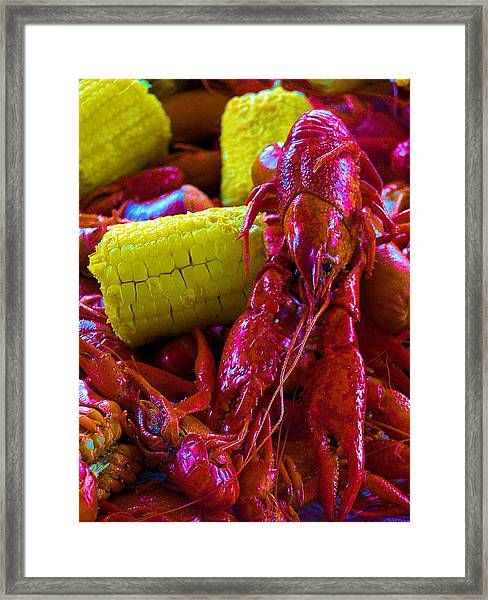 05092010 Boiled Mud Bugs Framed Print