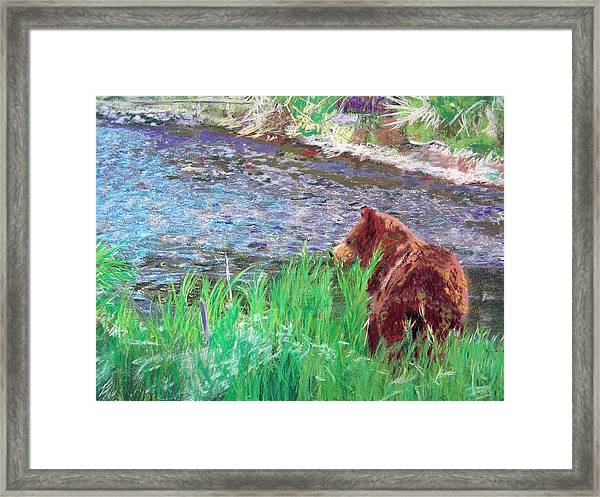 082714 Black Bear Pastel Framed Print