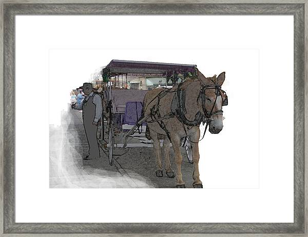 091614 Color Pencil Mule And Carriage Framed Print