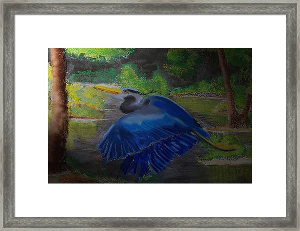 091714 Dawn In The Marsh Framed Print