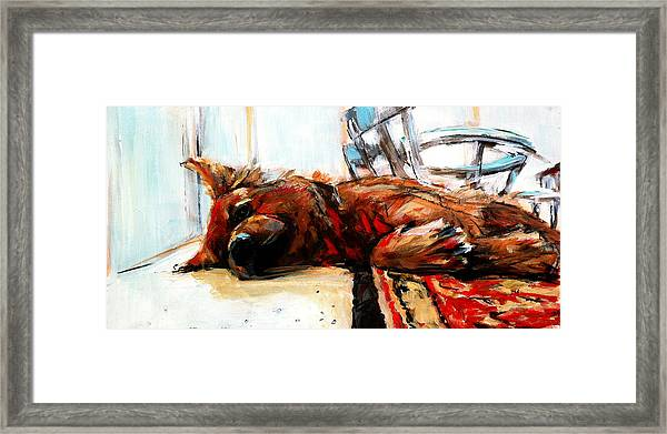 1/2 And 1/2 Framed Print by Michelle Winnie