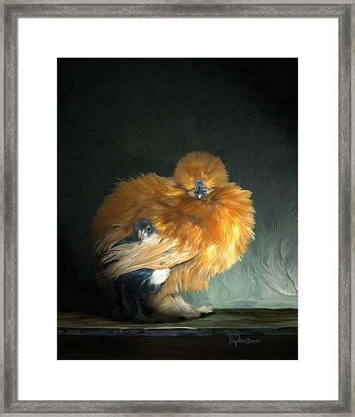 20. Hiding Framed Print