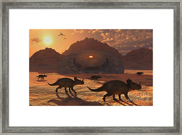 A Herd Of Dinosaurs Walk Past A Flying Framed Print
