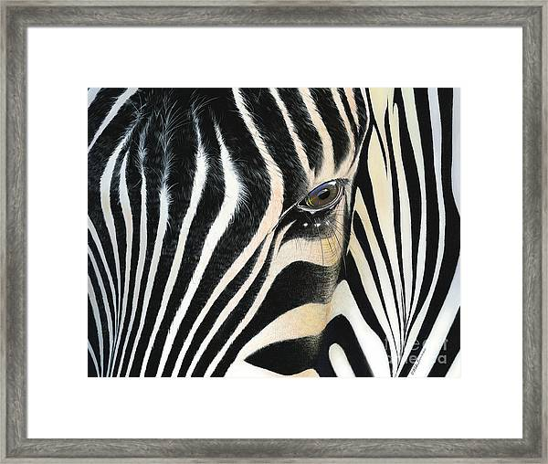 A Moment's Reflection Framed Print