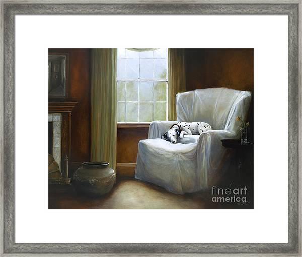 Afternoon Nap Framed Print by Stella Violano