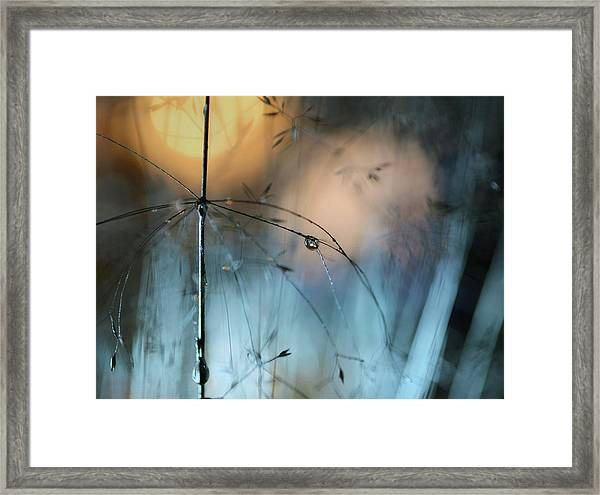 Almost Dark Framed Print